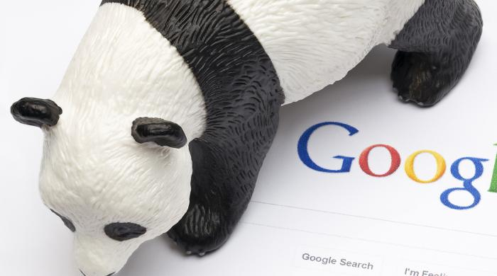 Thumbnail image for A History of Google Panda